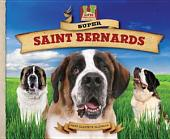 Super Saint Bernards
