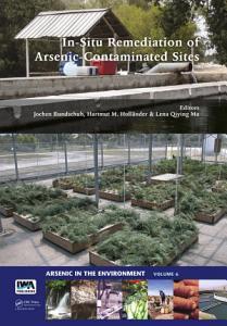 In Situ Remediation of Arsenic Contaminated Sites