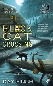 Black Cat Crossing