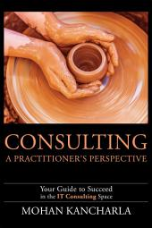 Consulting: A Practitioner's Perspective