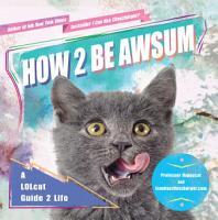 How 2 Be Awsum PDF