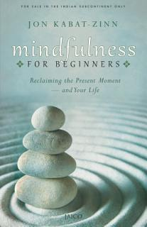 Mindfulness for Beginners Book