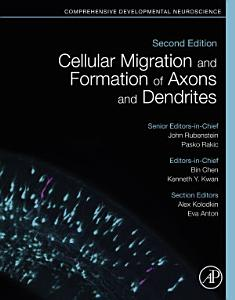 Cellular Migration and Formation of Axons and Dendrites
