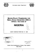 Macro Policy Framework for Small scale Industries  SSI  in Africa PDF