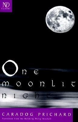 One Moonlit Night PDF