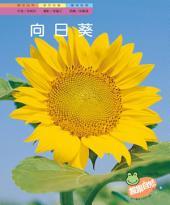 向日葵: 親親自然143