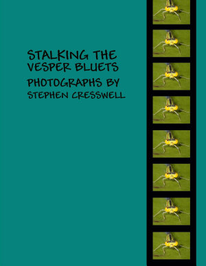 Stalking the Vesper Bluets  Photographs by Stephen Cresswell