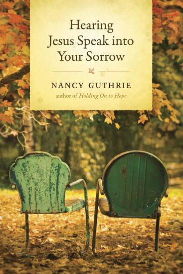 Hearing Jesus Speak into Your Sorrow PDF