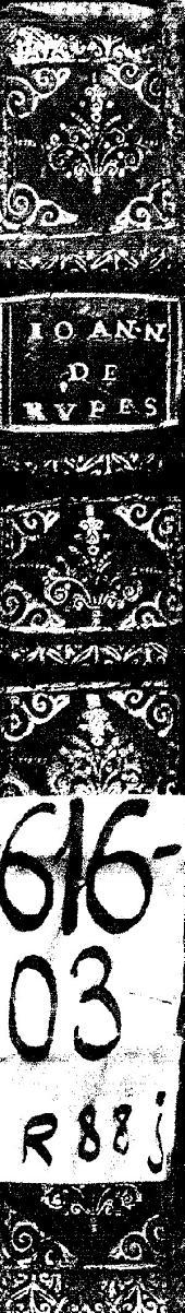 Ioannis de Rupescissa... De consideratione Quintae essenti[a]e rerum omnium...: Arnaldi de Villanoua Epistola de sanguine humano distillato