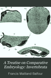 A Treatise on Comparative Embryology: Invertebrata