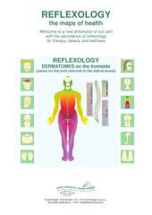 REFLEXOLOGY - DERMATOMES on the frontside: REFLEXOLOGY - the maps of health