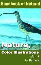 Nature, Color Illustrations Vol.4: Handbook of Nature
