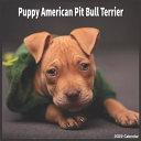 American Pit Bull Puppy 2022 Calendar