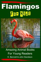 Flamingos For Kids - Amazing Animal Books For Young Readers