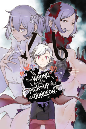 Is It Wrong to Try to Pick Up Girls in a Dungeon   Vol  16  light novel