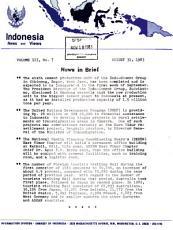 Indonesia News and Views PDF