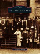 The Carey Salt Mine