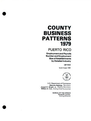 County Business Patterns  Puerto Rico PDF
