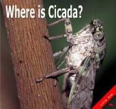 Where is Cicada?: Little Kiss04