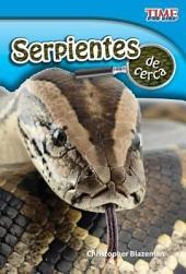 Serpientes de cerca (Snakes Up Close)