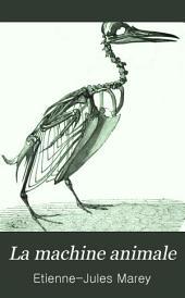 La machine animale: locomotion terrestre et aérienne