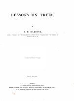 Lessons on Trees