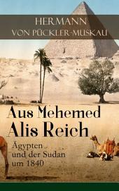 Aus Mehemed Alis Reich: Ägypten und der Sudan um 1840 (Vollständige Ausgabe)