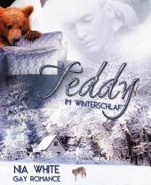 Teddy im Winterschlaf: Gay Fantasy Romance