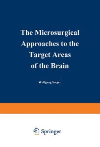 The Microsurgical Approaches to the Target Areas of the Brain Book