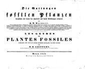 Die Gattungern der Fossilen pflanzen verglichen mit denen der Jetzwelt und durch abbildungen Erläutert...