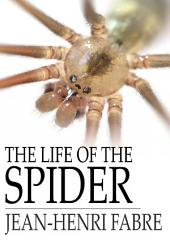 The Life of the Spider