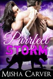 Purrfect Storm: A BBW Billionaire Panther Shifter Romance