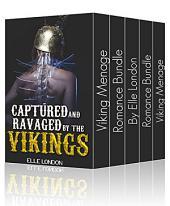 Viking Menage Romance Bundle