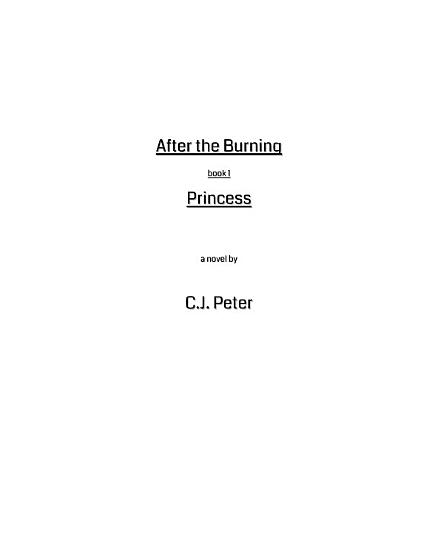 After the Burning PDF