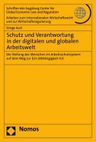 Schutz und Verantwortung in der digitalen und globalen Arbeitswelt PDF