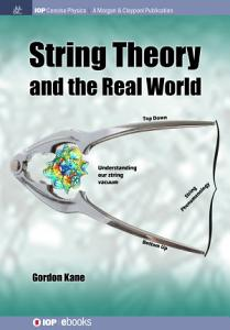 String Theory and the Real World Book