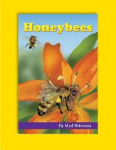 Honeybees: Reading Level 3