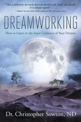 Dreamworking PDF