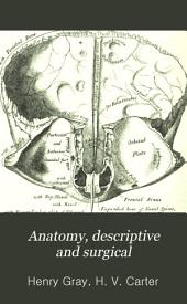 Anatomy-- descriptive and surgical