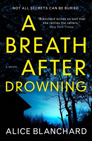 Download A Breath After Drowning Book