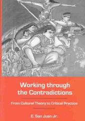 Working Through the Contradictions: From Cultural Theory to Critical Practice