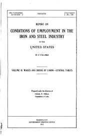 Report on Conditions of Employment in the Iron and Steel Industry in the United States: Wages and hours of labor