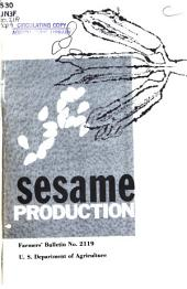 Sesame Production