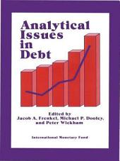 Analytical Issues in Debt