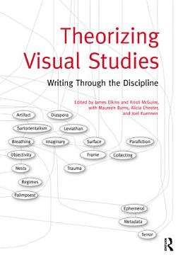 Theorizing Visual Studies PDF