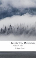 Twenty Wild Decembers  Poems on Time PDF