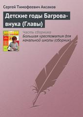 Детские годы Багрова-внука (Главы)