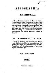 Alsographia Americana