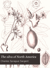 The silva of North America: a description of the trees which grow naturally in North America exclusive of Mexico, Volume 14