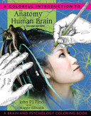 A Colorful Introduction to the Anatomy of the Human Brain